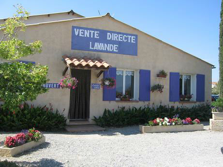 You are currently viewing The Gardens of France – Part 2 – Valensole