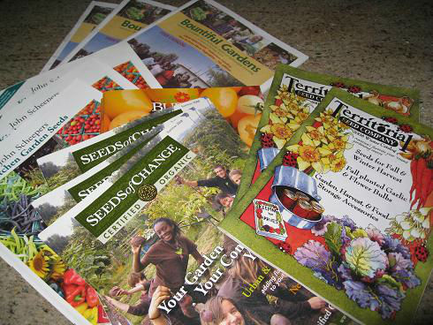 Read more about the article Fall Garden Planning Workshop Review