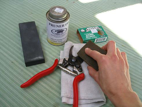 Read more about the article YouTube: How to Clean Pruning Shears