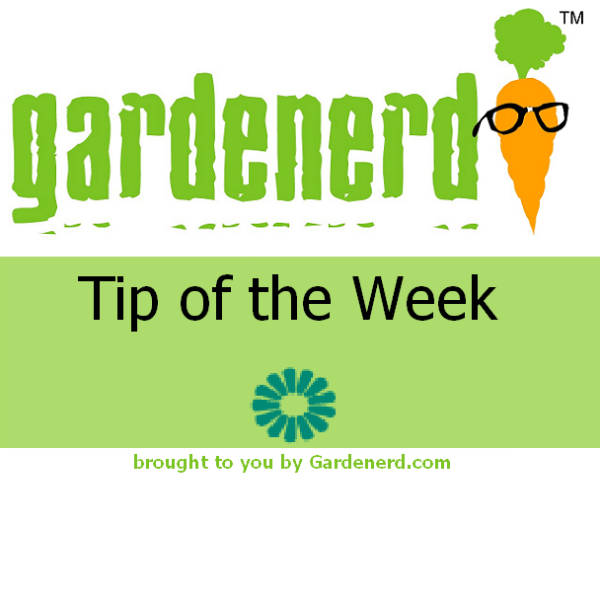 Read more about the article Tool Talk for Spring Gardening