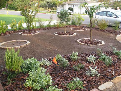 gardenerd organic edible gardening our landscaping project part 3