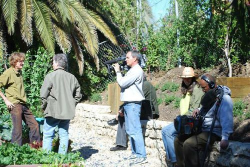 Read more about the article Television Shoot for Gardenerd