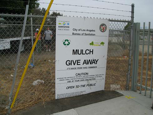 Read more about the article Adventures with City Mulch