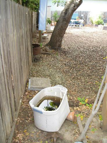 You are currently viewing Rain Barrel – 3 Ways