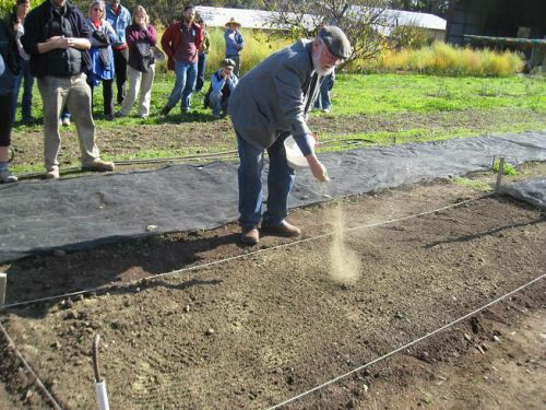 Read more about the article Grow BioIntensive Workshop