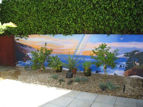 Read more about the article Drought Tolerant Design and Veggies