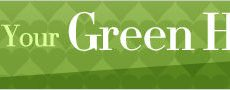 the-daily-green-hog-banner-ad