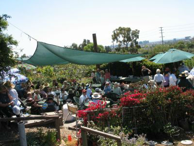 Read more about the article Biointensive Workshop at Ocean View Farms This Saturday!