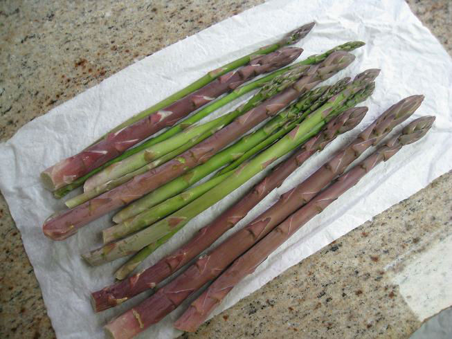 Read more about the article 3rd Year Asparagus …and they're off!