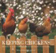 Read more about the article The Next Step in Urban Homesteading – Keeping Chickens