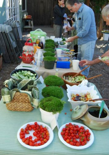 Read more about the article Gardenerd Potluck and Seed Exchange Review