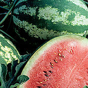 CrimsonSweetwatermelon