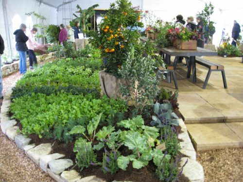 Read more about the article Field Trip – San Francisco Garden Show
