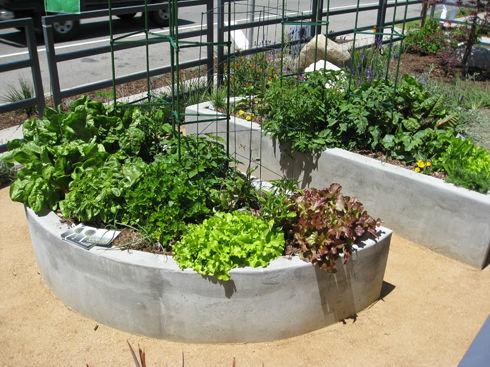 Read more about the article Mar Vista Green Garden Showcase 2011 Review