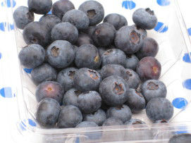 Read more about the article Local Organic Blueberries – Get 'em at the Patch