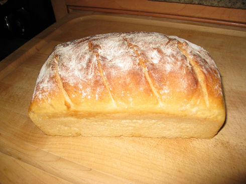 You are currently viewing Look Ma – Homemade Bread in 5 Minutes!