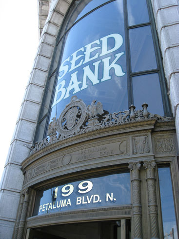 Read more about the article Petaluma Seed Bank Field Trip