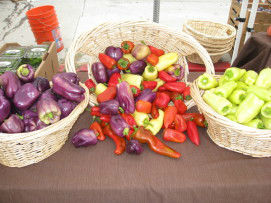 Read more about the article Got Peppers?