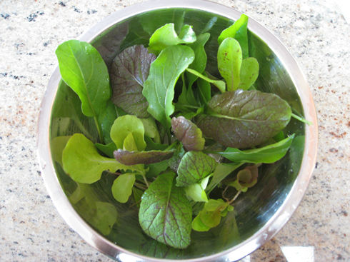 Read more about the article A Fall Thinnings Salad