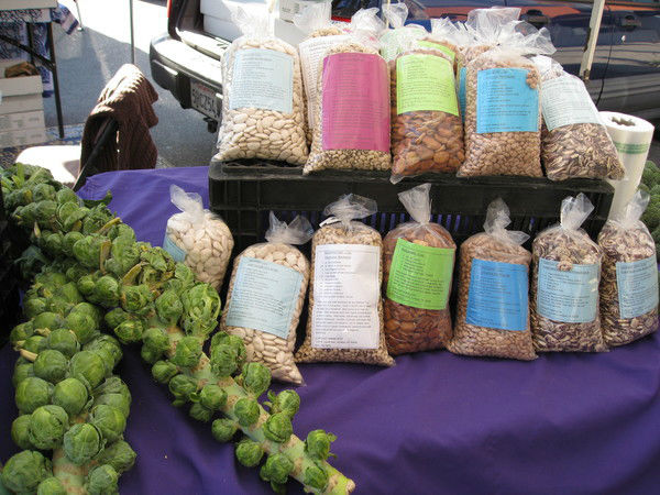 Read more about the article Got Beans? Sun Coast Farms Does.