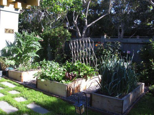 Kaplan Garden by Gardenerd
