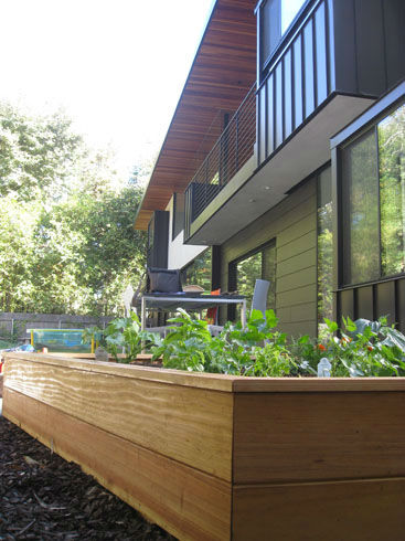 You are currently viewing New Garden: The Modern Parallelogram