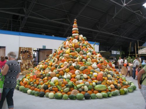 Read more about the article Heirloom Expo 2012 Review