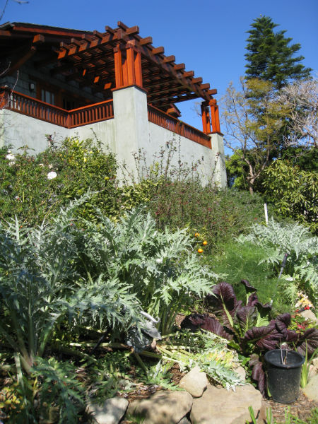 Read more about the article Field Trip: Permaculture / Biodynamic Garden