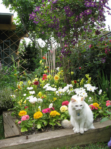 Read more about the article It's Garden Tour Time