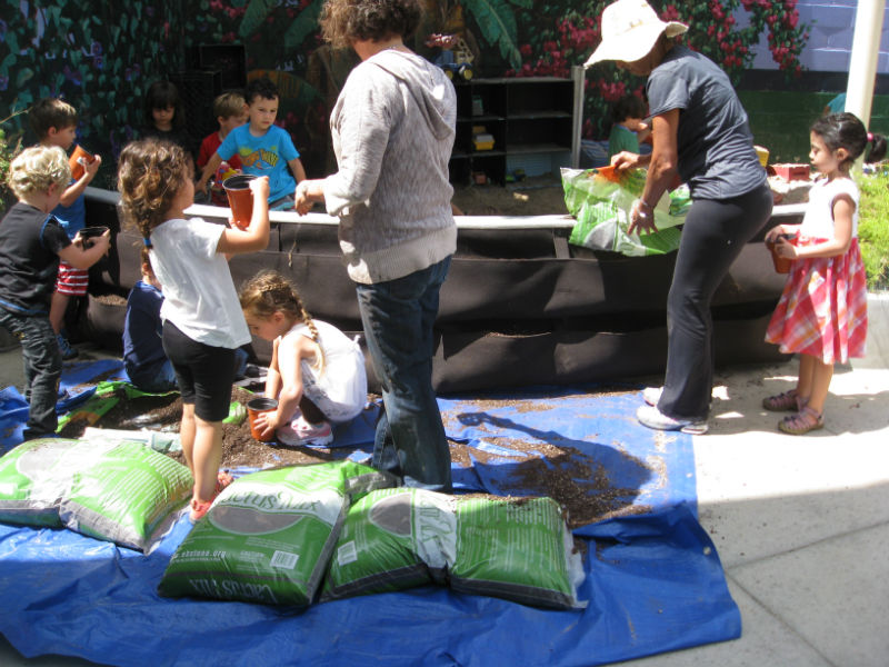 Eager kids fill Woolly Pockets with soil. The grown ups planted succulents later