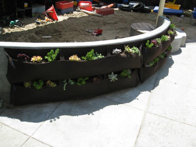 New orderly vertical garden gives teachers a sense of peace.
