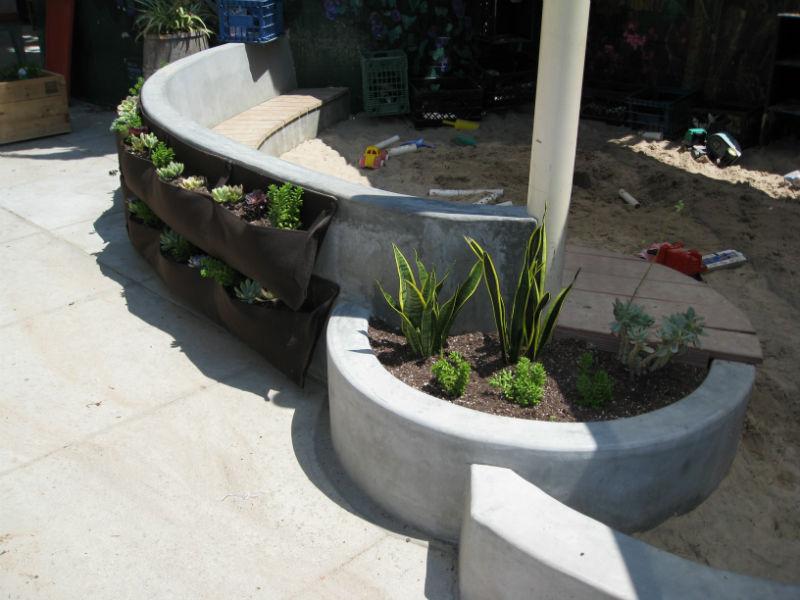 Read more about the article School Garden Wonderland
