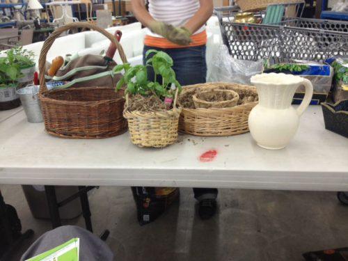 Read more about the article ReStore / Repurpose a Garden Planter