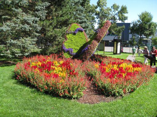 Read more about the article Field Trip: Quebec City Gardens – Roger Van den Hende Botanical Gardens