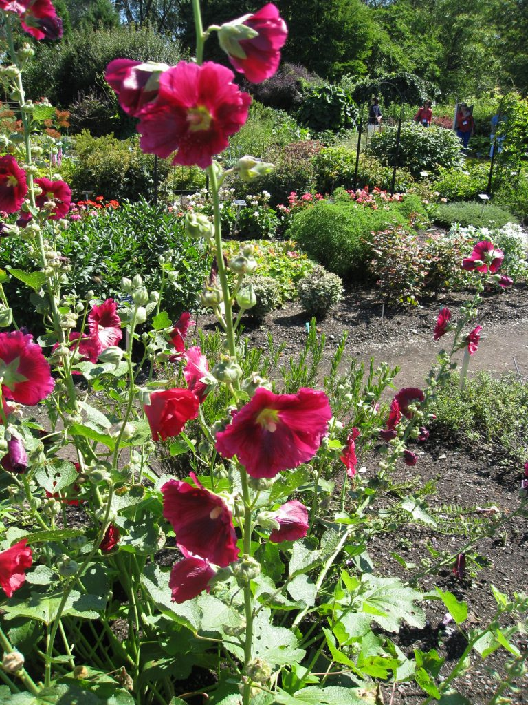 Charming flower gardens stretch across the property