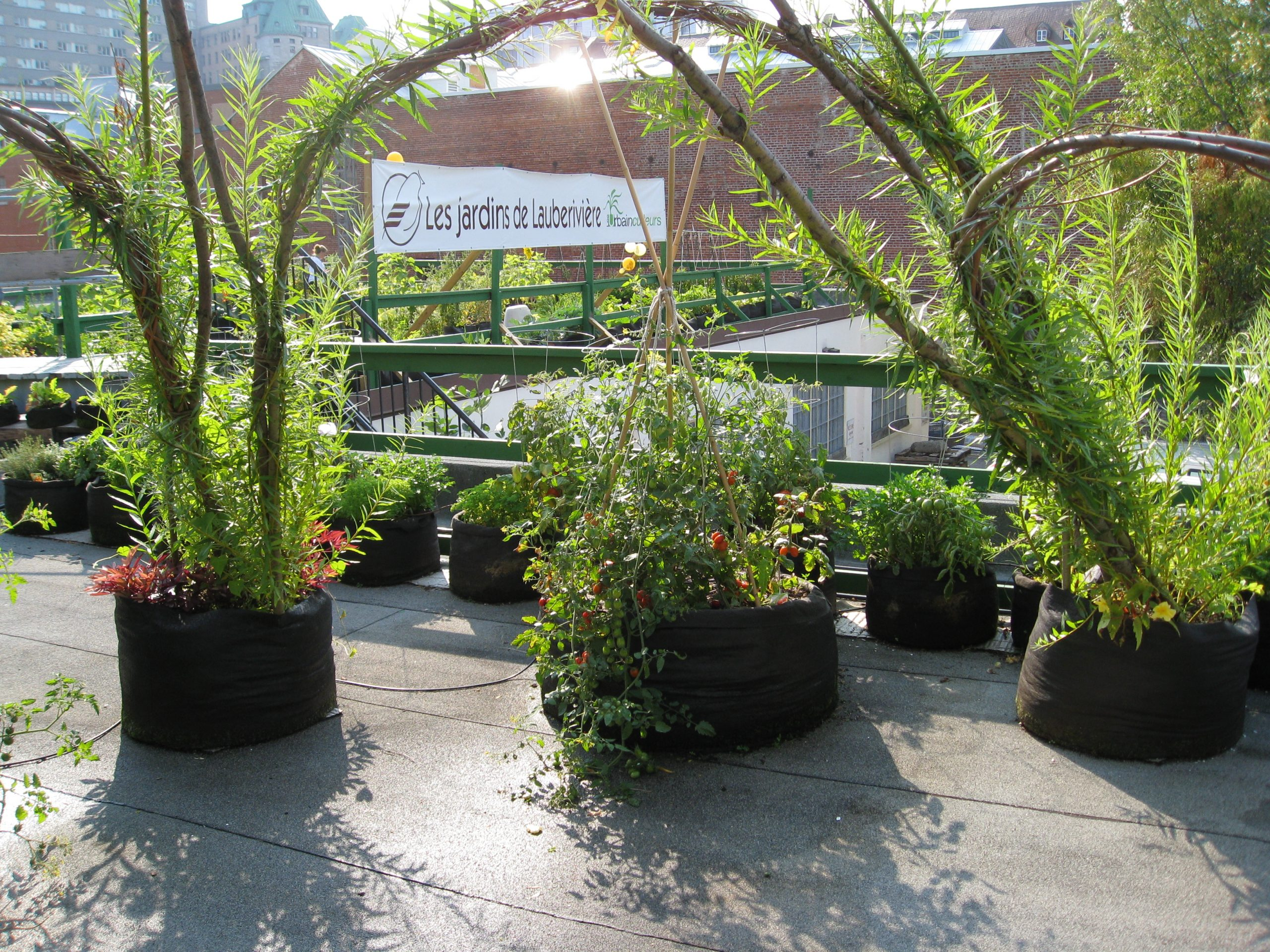 You are currently viewing Field Trip: Quebec City Rooftop Garden – Les Jardins des Lauberiviere