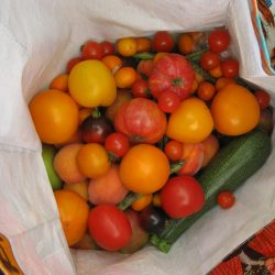 produce exchange3