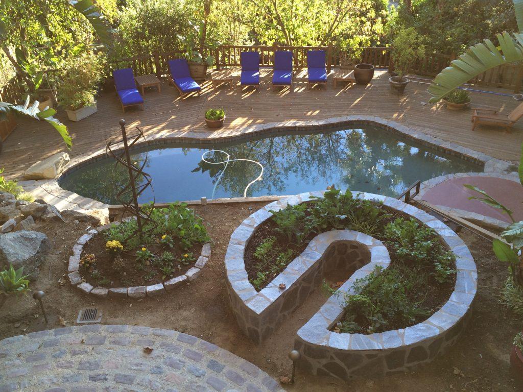 Jesse's garden after growing in a few weeks.