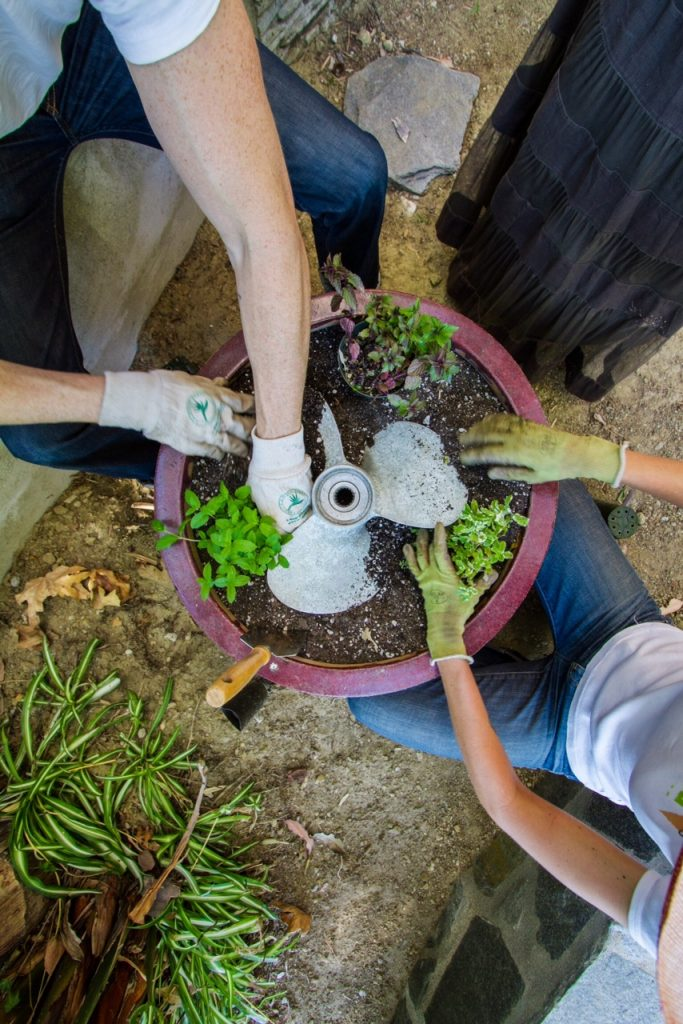 An old propeller is incorporated into the mint pot. Photo by Sarah Haywood.