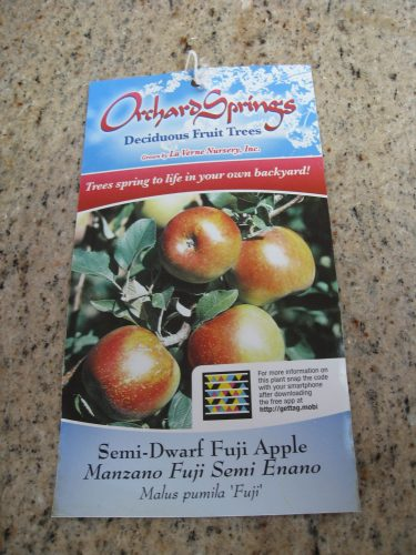 Read more about the article Million Trees LA – Free Fruit Trees