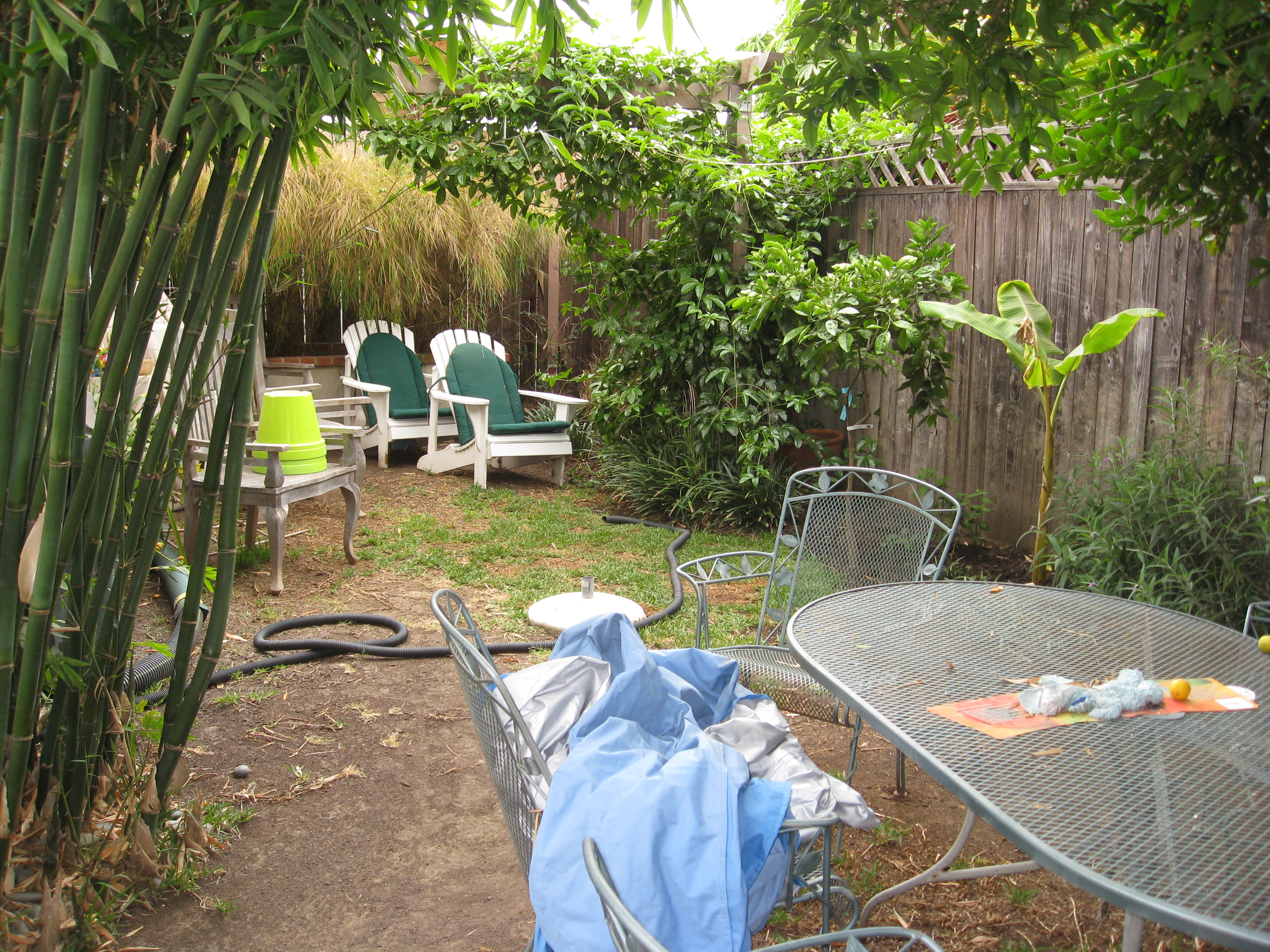 Passionfruit and citrus trees needed taming, and extra furniture needed a home.