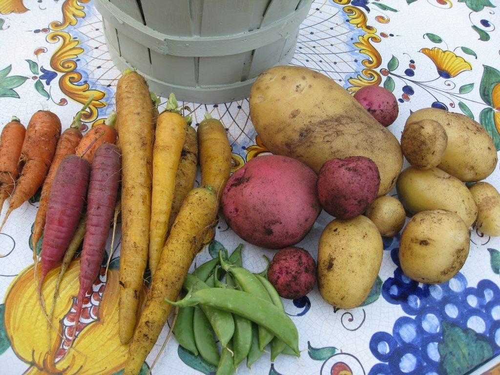 Whoever said gardening was boring just hasn't grown heirloom varieties yet.