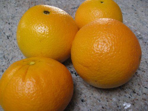 Read more about the article Ask Gardenerd: Citrus Fruit Tree Care