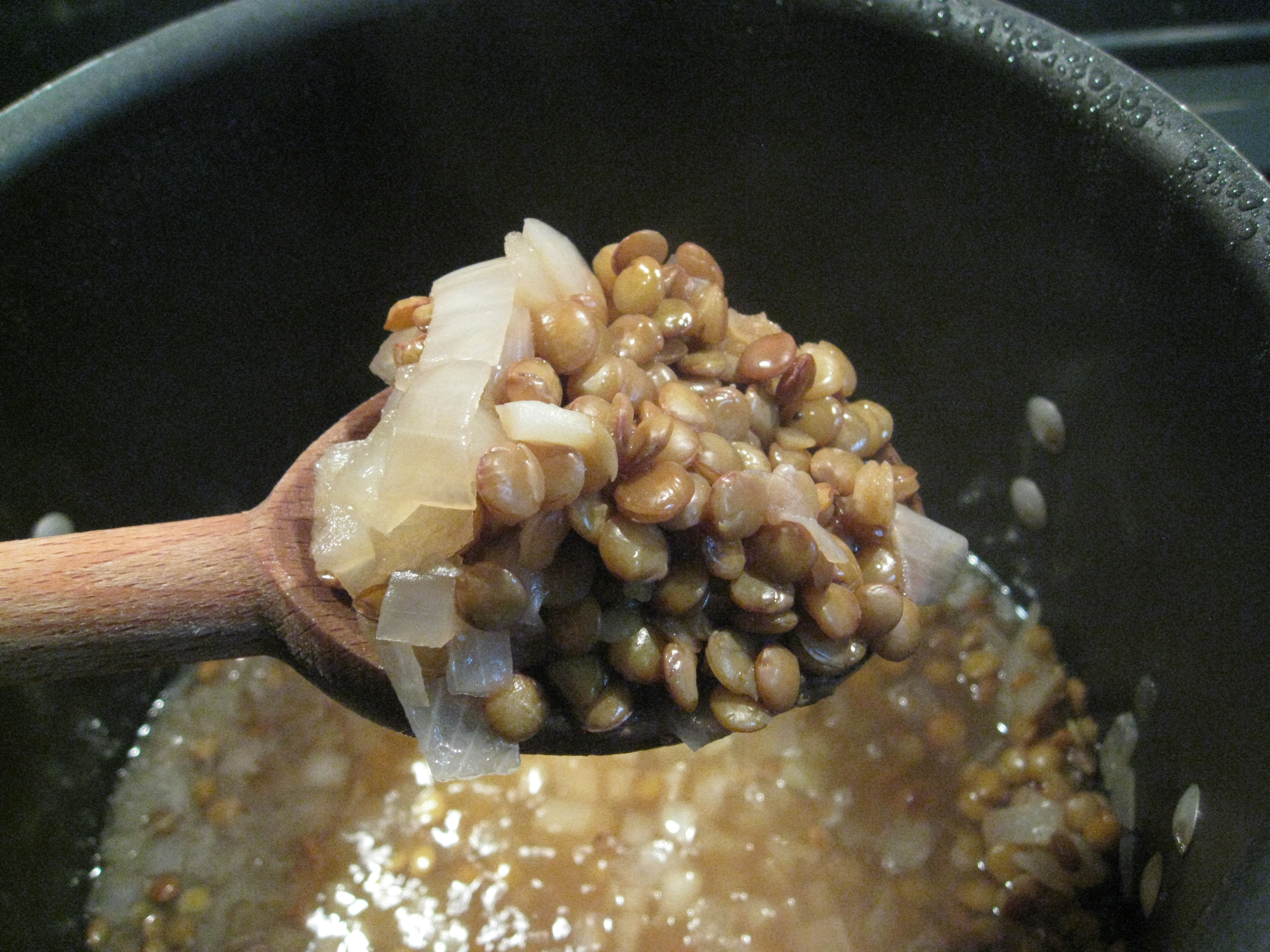 Lentils and onions cooked in about 30 minutes