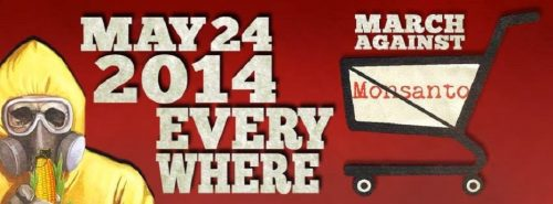 Read more about the article March Against Monsanto 2014