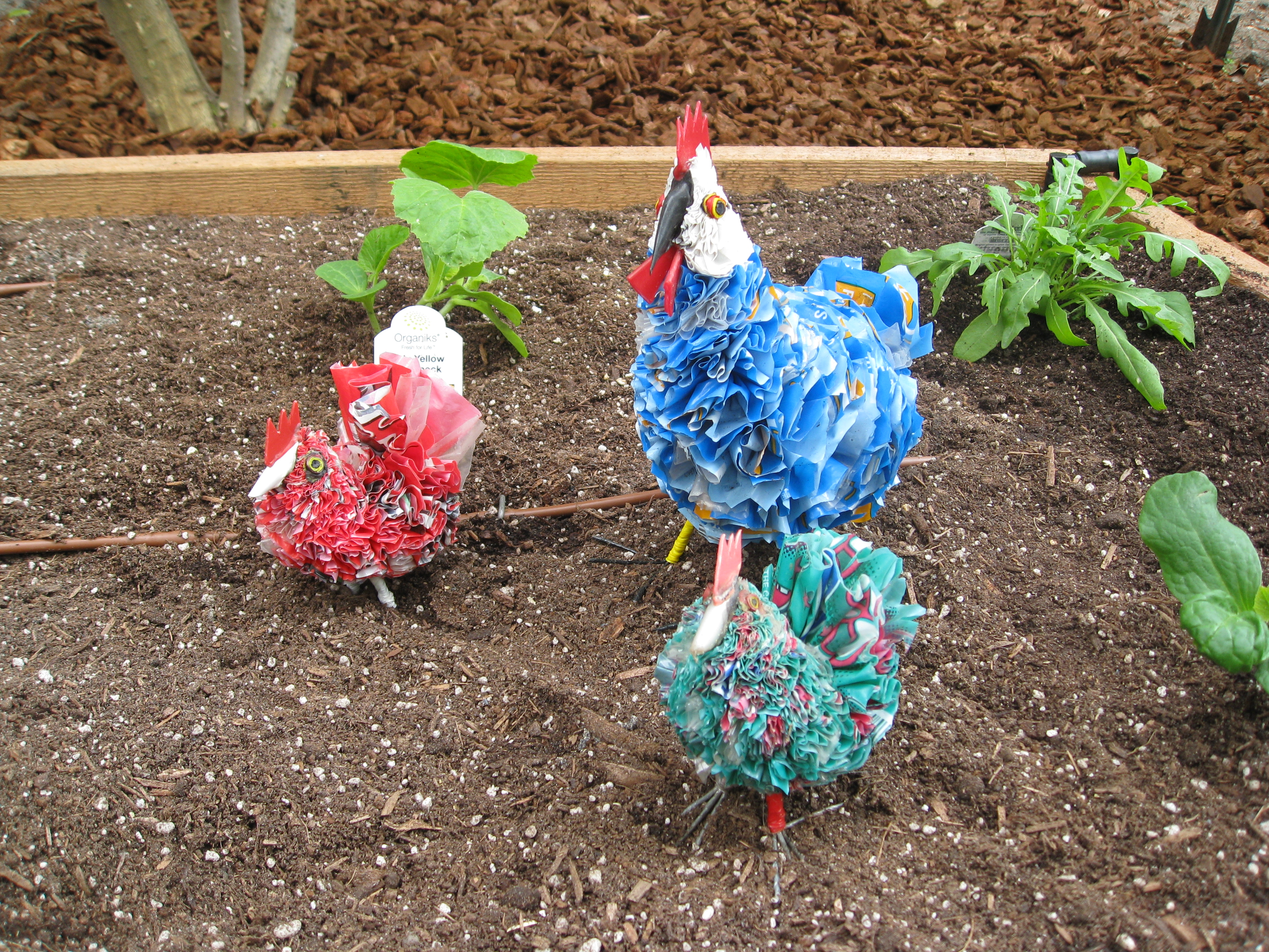 Colorful chickens bring whimsy to the garden