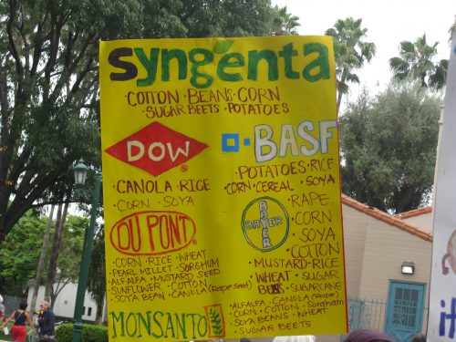 Read more about the article Wordless Wednesday: Signs from March Against Monsanto