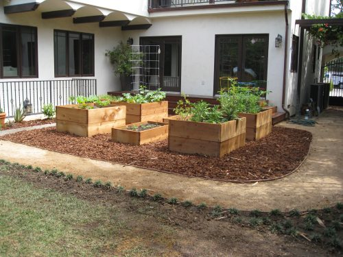 Read more about the article New Garden for Dad and His Little Girl