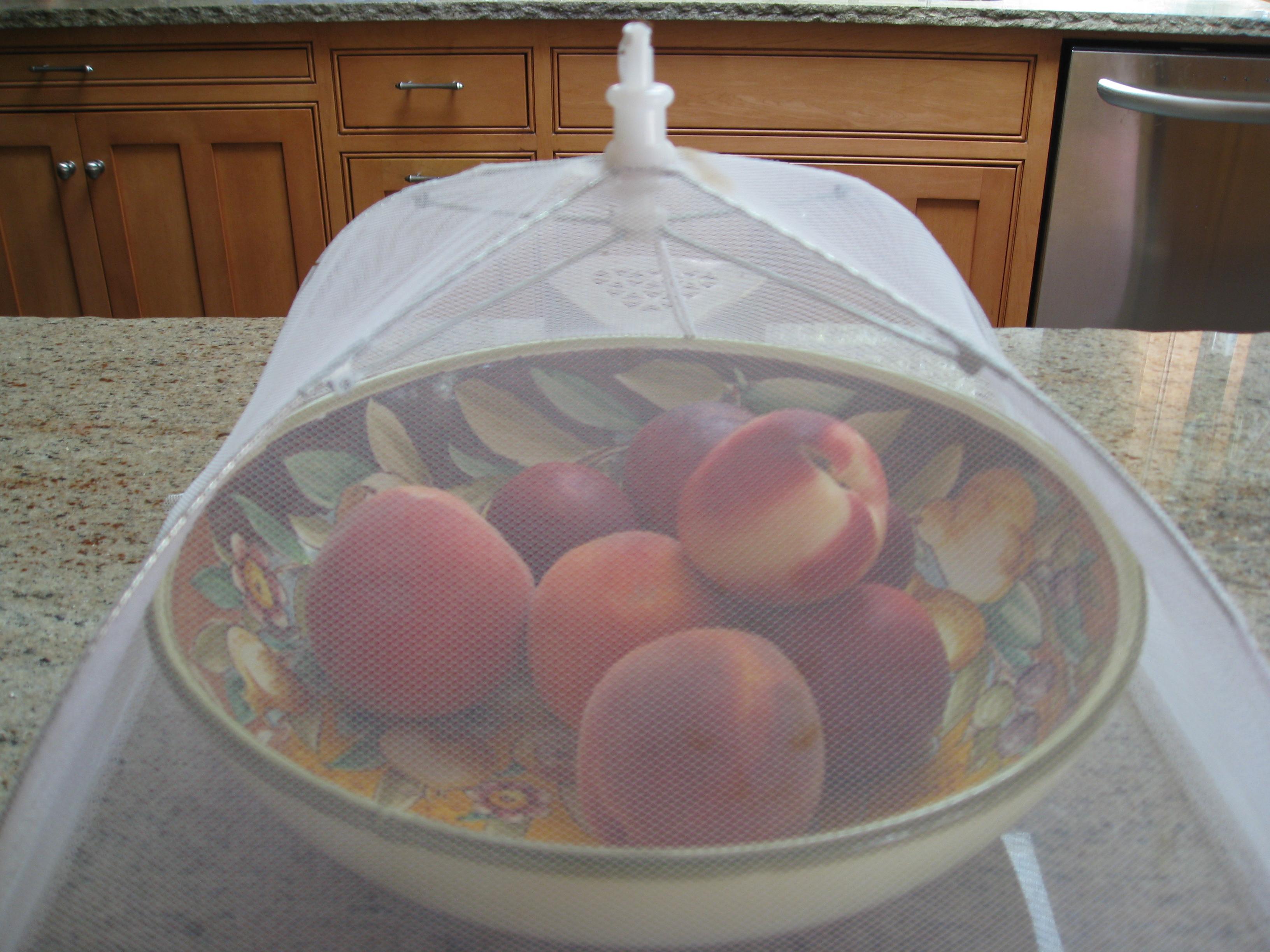 Homemade Fruit Fly Traps - Gardenerd