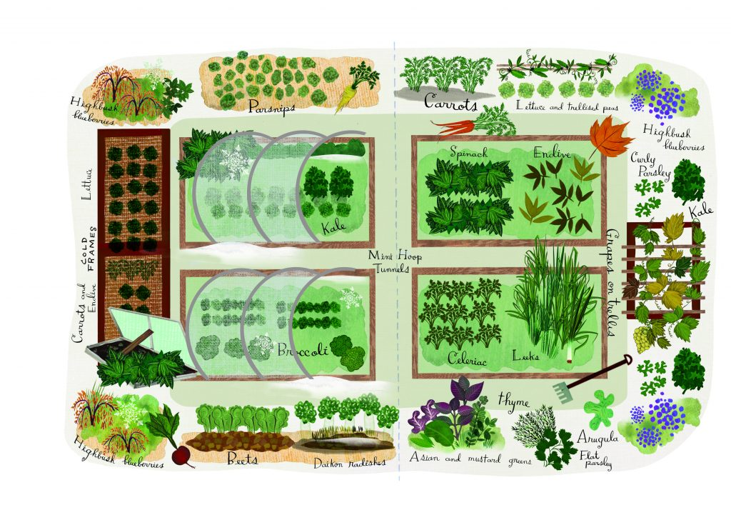 Got winter? This fall/winter veggie garden is for you.